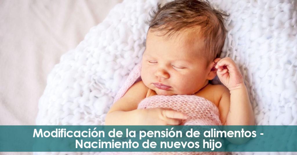 Modificación de la pensión de alimentos. Nacimiento de nuevos hijos