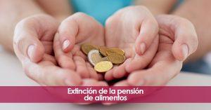 Extinción de la pensión de alimentos. Nula relación padre e hijos