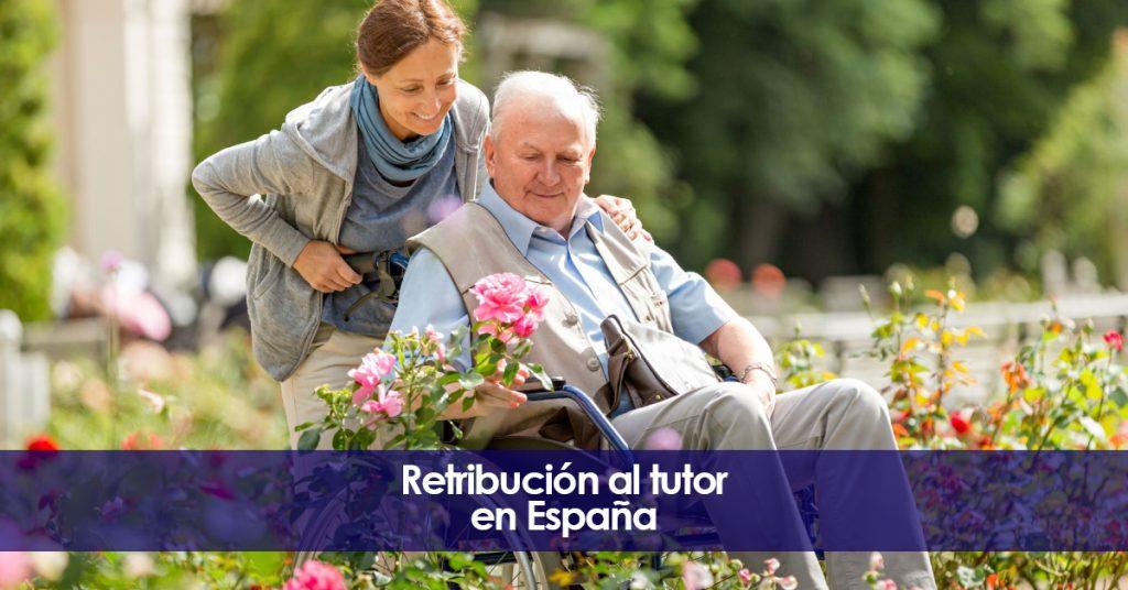 Retribución al tutor y curador en España